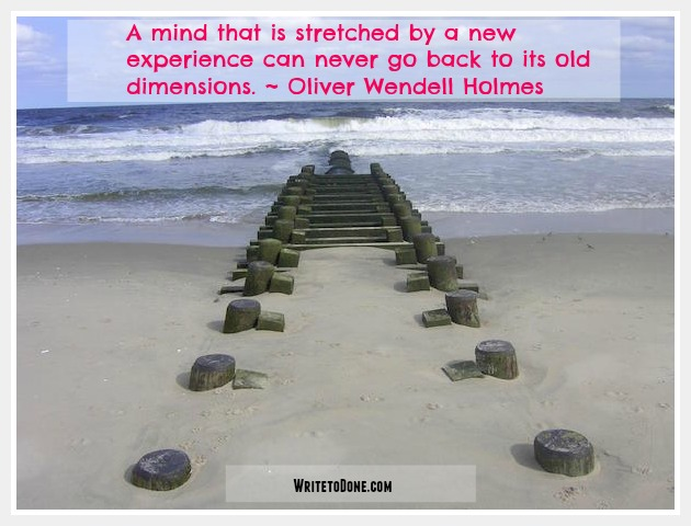 A mind that is stretched by a new experience can never go back to its old dimensions - Oliver Wendell Holmes